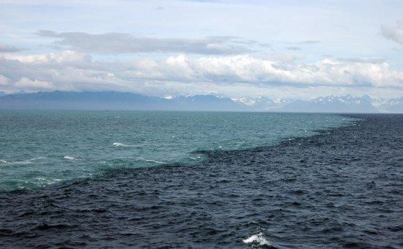Amazing natural phenomenon