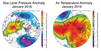 Figure 2b. These graphs show average sea level pressure and air temperature anomalies at 925 millibars (about 3, 000 feet above sea level) for January 2016. normal.||Credit: National Snow and Ice Data Center, courtesy NOAA Earth System Research Laboratory Physical Sciences Division| High-resolution image