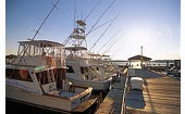 NC Charter Fishing Boats