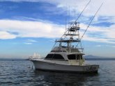 Sea Fishing Trips North West