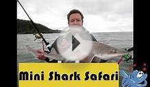 North Devon mini shark Kayak fishing Bonanza