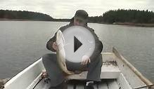 Pike fishing in Finland /Fishing around Kustavi area