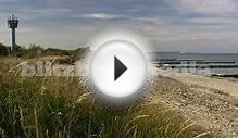 Stock Footage Europe Germany Baltic Sea Coastal Forest